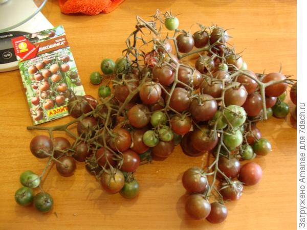 Урожай с 3х кустов