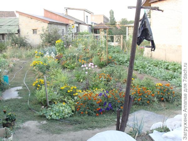 А таким огород был у меня, но соседу он нравился наличием цветов везде, где можно