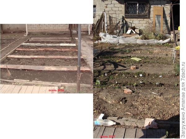 Перед домом пока высадила землянику, и пока ещё куча мусора на заднем плане