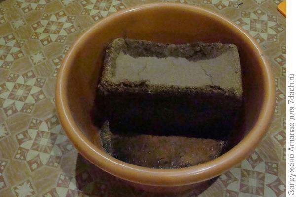 Размачиваю брикет кокоса в 3х литрах воды