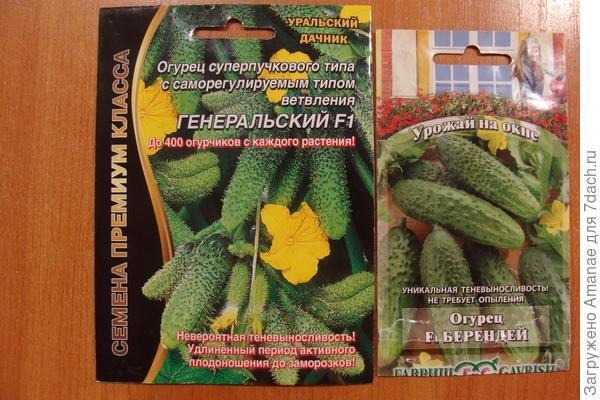Семена для домашнего выращивания
