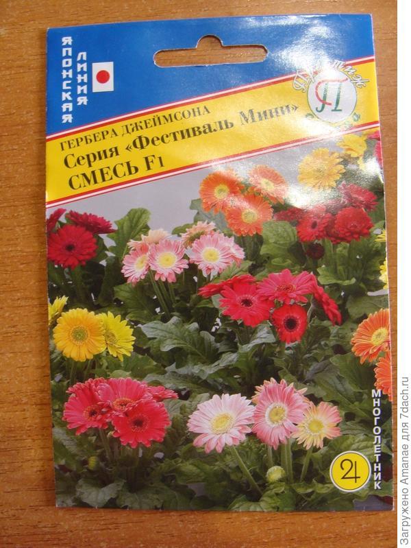Семена герберы в пакете