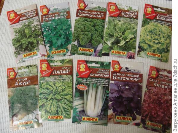 Всякая зелень для огорода