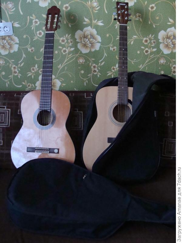 После покупок гитар, подарки напросились сами собой - чехлы