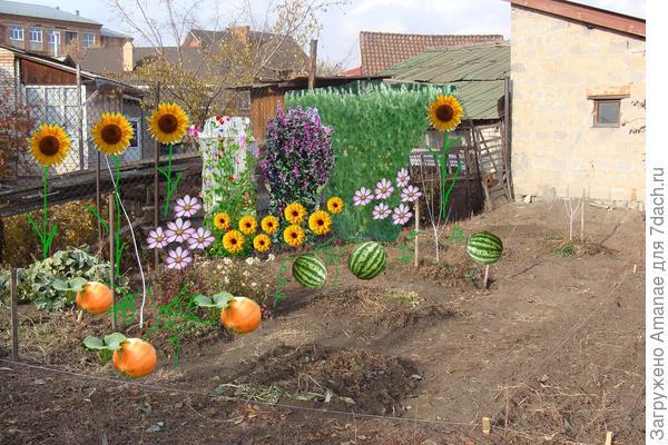 Планируемый цветникоогород