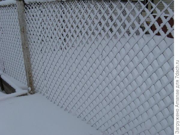 После снегопада забор из рабицы кажется очень красивым