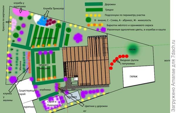 Общий план участка с цветниками, грядками, клумбами и деревьями