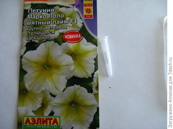 Пакетик с семенами