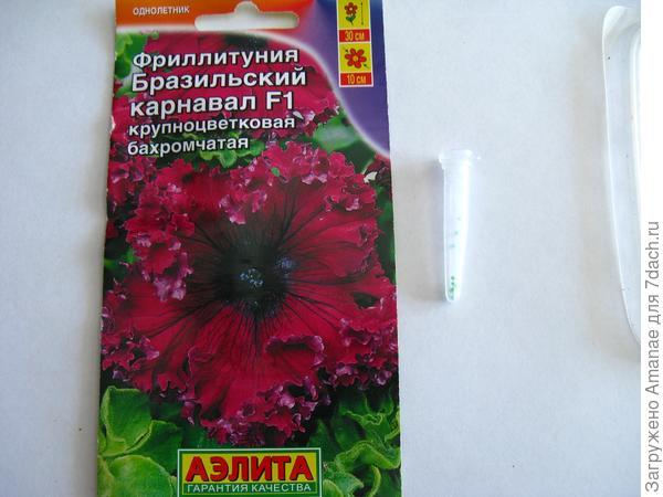 Семена эустом и петуний чаще всего дражированы и находятся в колбочке