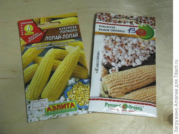 Кукуруза Попкорн для сезона 2020