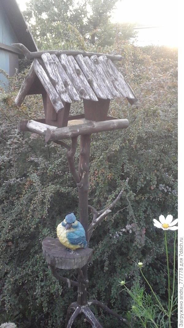 Птичка прилетела и окаменела от счастья