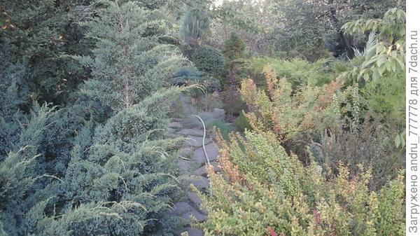 Дачные пейзажи