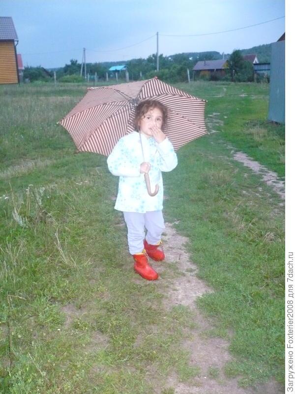 под зонтом и с холодным носом