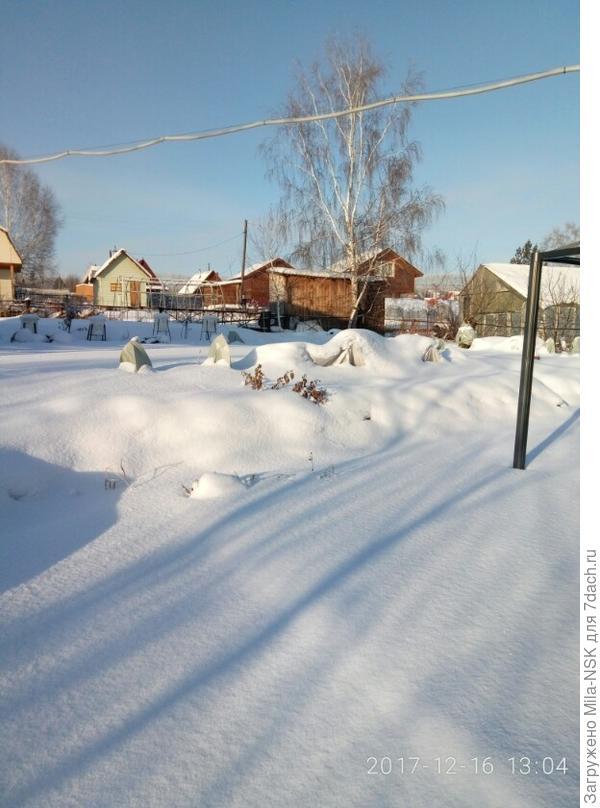 по снежным покрывалом