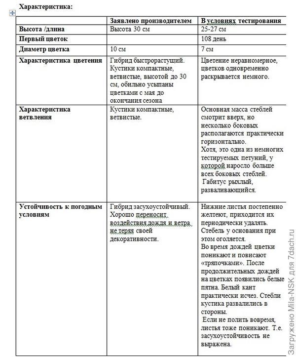 Итоговая сравнительная таблица