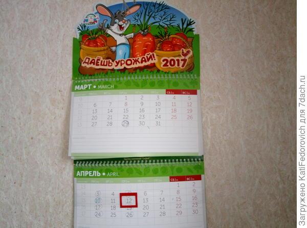календарь повесили