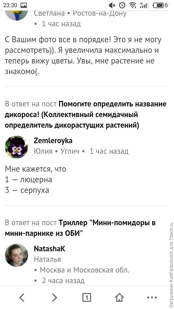 На ответе Юлии, нет значка