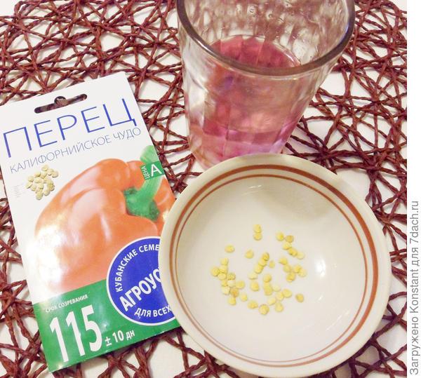 Дезинфекция семян перца