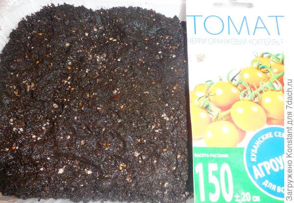 Посев семян томата
