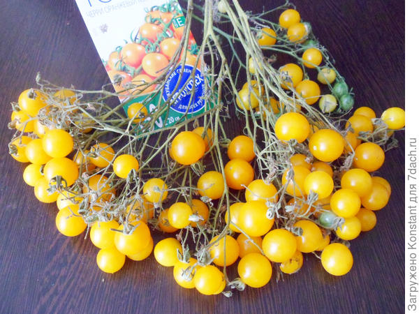 Теперь более подробно о плодах томата.