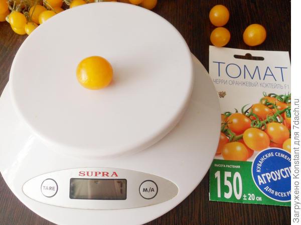 Вес одного томата 7 граммов.