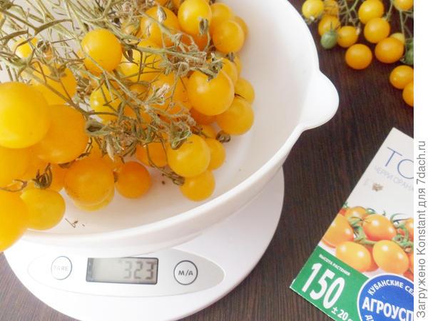 Вес кисти томата 323 грамма.