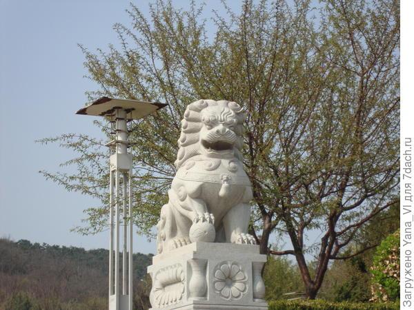 лев по китайски