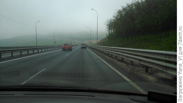 Дождь и туман одновременно...