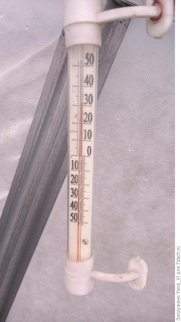 термометр