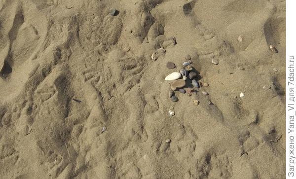На песке видны следы птичьих лап, не затоптанные ещё людьми...