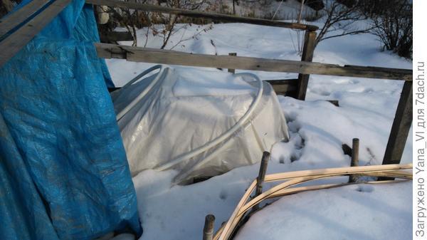 Это 12 ноября, снег выпал