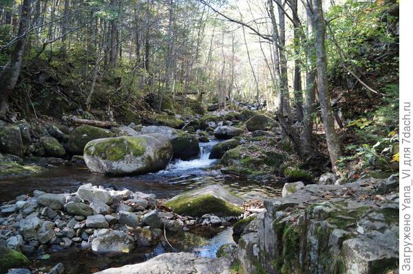 русло засыпано большими и маленькими камнями, на которых ручей образует водопадики