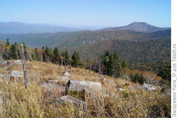 Деревья больше не заслоняют  видимость, но и камни не прикрывают. Они теперь хорошо видны.