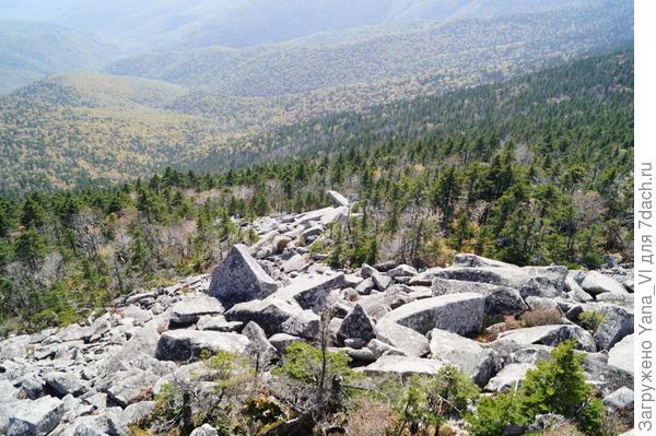 Каменный ручей стекает со склона