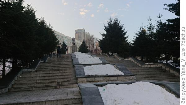 Редкий снежок сгребли на клумбы, в надежде сохранить растения