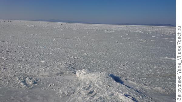 Вот такое оно... замёрзшее в декабре море :)