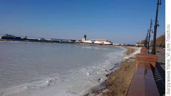 Яхты укрыты на зимовку