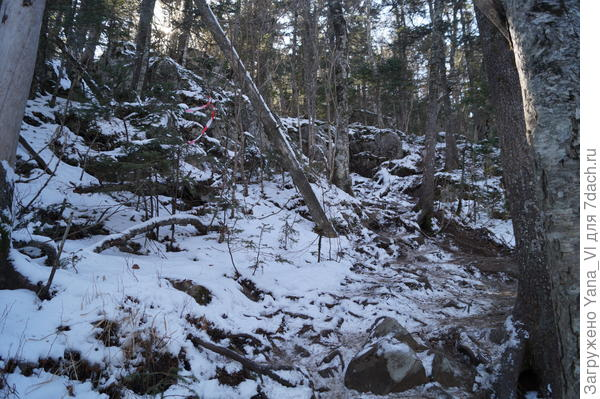 Тропу уже не видно практически на снегу