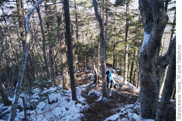 Идти становится очень трудно. Камни скользкие из-за снега.