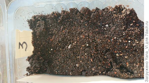 гранулы разложены на грунте