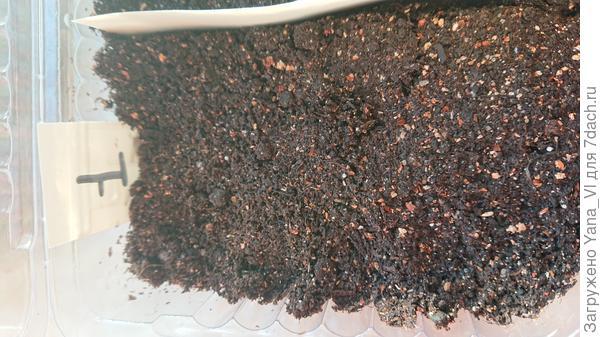 гранулы на грунте
