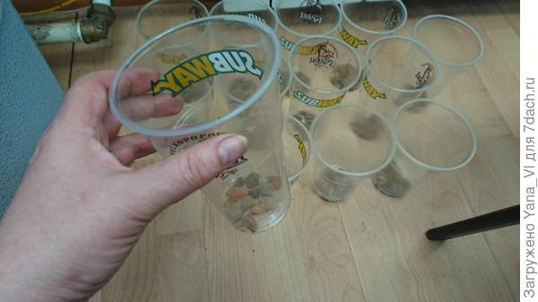 стакан с керамзитом