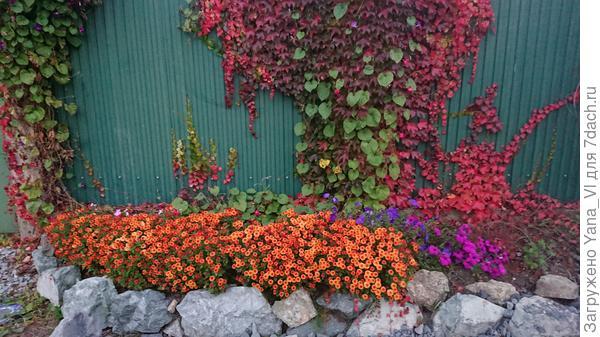 Вот такая красота осенью :)