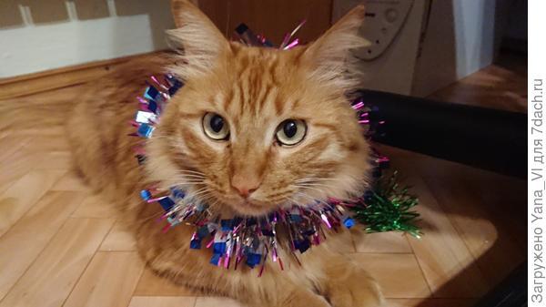Котик новогодний вместо курочки :) сойдёт? ;)
