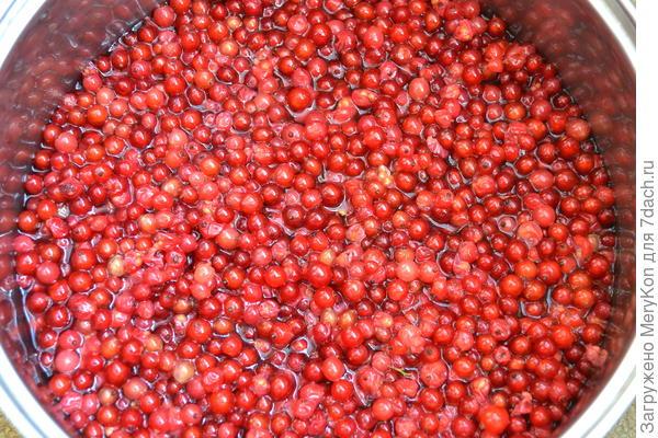 Желе из красной смородины - пошаговый рецепт приготовления с фото