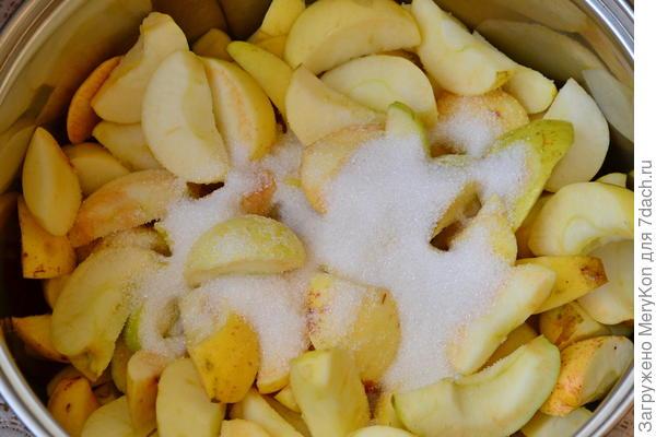 Яблочно-малиновая пастила в сушилке. Пошаговый рецепт с фото