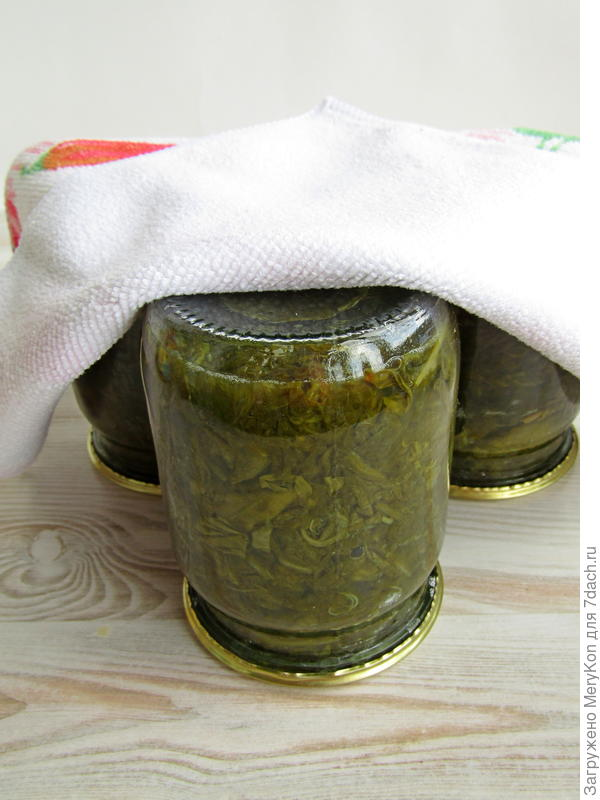 Щавель с морской солью впрок - пошаговый рецепт приготовления с фото