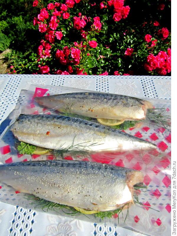 Скумбрия гриль с лимоном и травами - пошаговый рецепт приготовления с фото