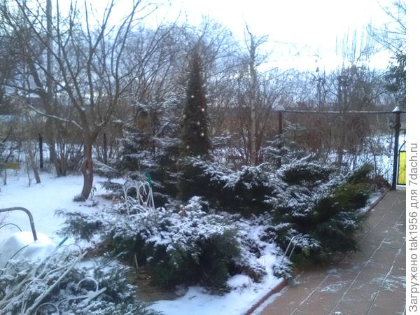 А вот и Старый новый год! Снегом припорошило несколько дней назад, пока лежит. И мороз ночами до -10.
