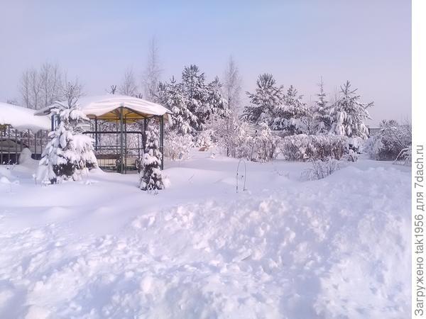 Хороша Зимушка-зима!
